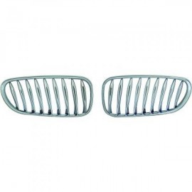 Radiateurgrille BMW Z4 Roadster/Coupe 2002-2009